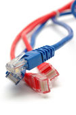 Blue and red network cable plugs — Stock Photo