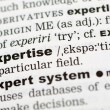 Dictionary definition of expertise — Stock Photo #9147727