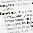 Dictionary definition of fund — Stock Photo #9147775