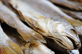 Salted fish — Stock Photo