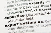 Dictionary definition of expertise — Stock Photo