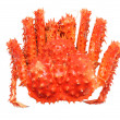 Alaskan king crab - Stock Photo