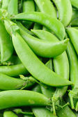 Sugar snap peas — Stock fotografie