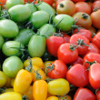 Colorful assorted tomatoes — Stock Photo
