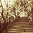 Stairs in park, budapest in golden color — Stock Photo #10596783