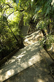Stairs in park, budapest — Stock Photo