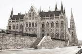 Budapest parliament (monochrome) — Stock Photo