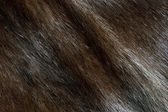 Abstract brown mink fur background (diagonal texture) — Stock Photo