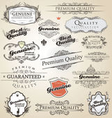 Premium Quality and Satisfaction Guarantee vintage Label — Stock Vector
