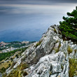 Adriatic coast - Stock Photo