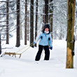 Stock Photo: Sledding girl