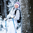 Winter hiking - Foto Stock