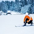 Stock Photo: Cross-country skiing