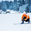 Cross-country skiing — Stock Photo #9107580