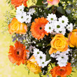 Bunch of spring flowers - Stock Photo