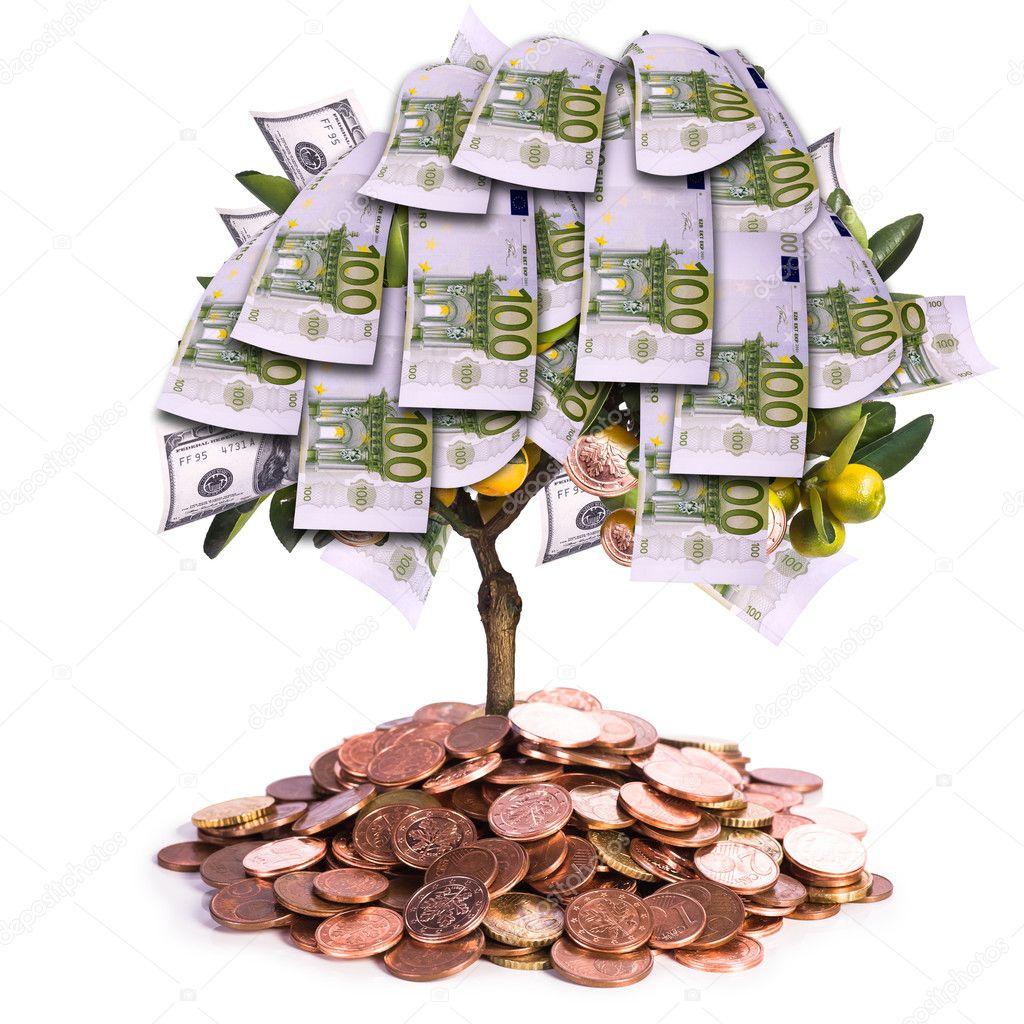 Привлечение денег денежное дерево своими руками6
