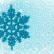 Snow flake — Stock Photo #8119232