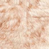 Fur background — Stock Photo