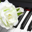 Artificial white rose on piano - Stock Photo