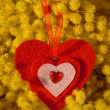 Stock Photo: Red heart and mimosa
