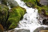 Small waterfall — Stock Photo