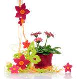 Blomdekorkvětinové dekorace — Stock fotografie