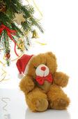 Jul björnen — Stockfoto