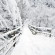 Winter bridge — Stock Photo