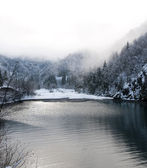 Winter lake — Foto Stock