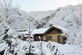дом в горах — Стоковое фото