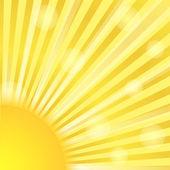 Sunburst — Stock Vector