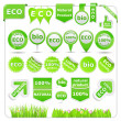 Green Eco Design Elements — Stock Vector