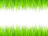 Grass frame — Stock Vector