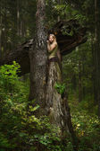 Blond girl in a magic forest — Foto de Stock