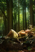 Blond girl in a magic forest — Stock Photo