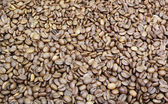 Coffee Beans from Close — Stock Photo