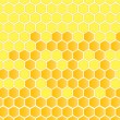 Honeycomb vector background — Stock Vector #10337828