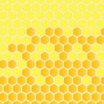 Honeycomb vector background — Stock Vector