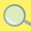 Honeycomb under magnifying glass vector background - Stock Vector