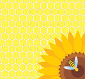Bee on sunflower and honeycomb vector — Stockvektor
