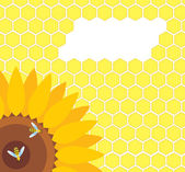Bee on sunflower and honeycomb vector — Stock Vector