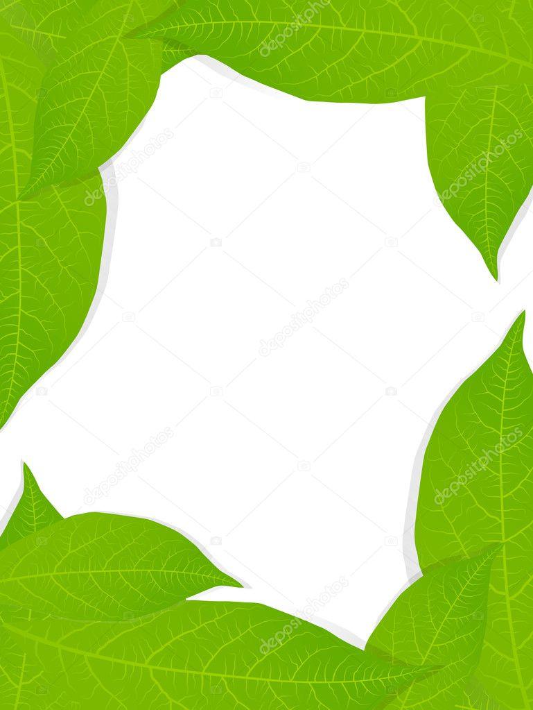 绿色的树叶背景矢量的海报