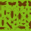 Insects environmental illustration collection background — Stock Vector
