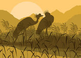 Crane couple in wild nature landscape illustration — Stock Vector