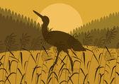 Stork bird wild nature landscape illustration — Stock Vector