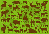 Animals with horns illustration collection background — Stock Vector