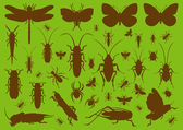 Insects environmental illustration collection background — Wektor stockowy