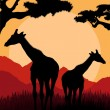 Giraffe family silhouettes in Africa wild nature mountain landscape — Stock Vector