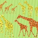 Giraffe family silhouettes — Stock Vector