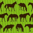 Royalty-Free Stock Vectorielle: Sport horse silhouettes illustration collection background vector